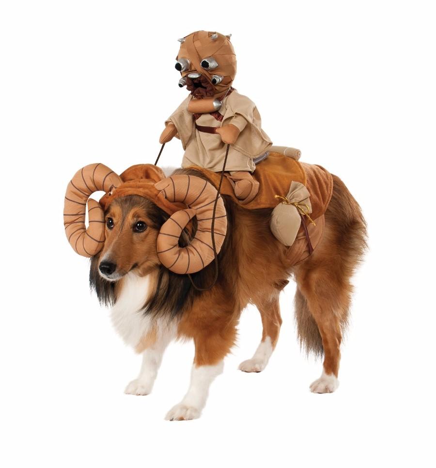 Костюм для вашего пса