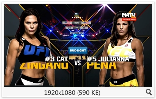 MMA. UFC 200. Miesha Tate vs. Amanda Nunes. Undercard + Main Card [09.07] (2016) HDTV 1080