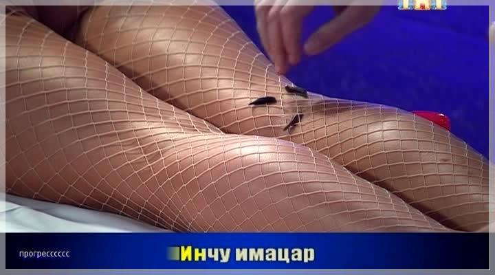 http://i6.imageban.ru/out/2016/07/20/85619883d417281db61e3e2538f559e8.jpg