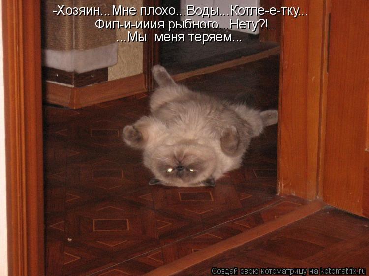 http://i6.imageban.ru/out/2016/09/16/6cb15372a8eaea88e280f698eac3f129.jpg