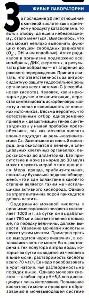 http://i6.imageban.ru/out/2016/12/17/aae27ad642b92e402889aa3fd3c712d8.jpg