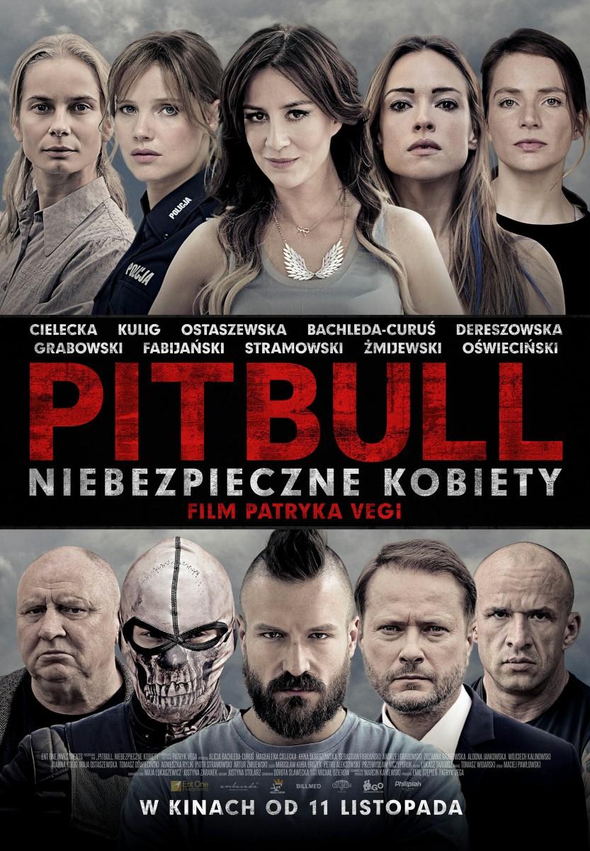 Pitbull. Niebezpieczne kobiety (2016) PL.DVDRip.XViD-KiT / film polski