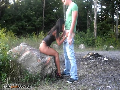 Nice sex action outdoors (2012) CamRip