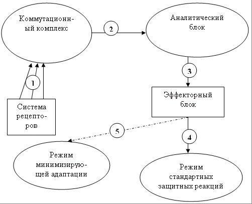 http://i6.imageban.ru/out/2017/07/30/d03b5cead28acfa5841b829034bf1d56.png