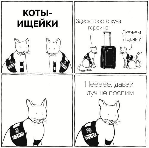 Коты ищейки
