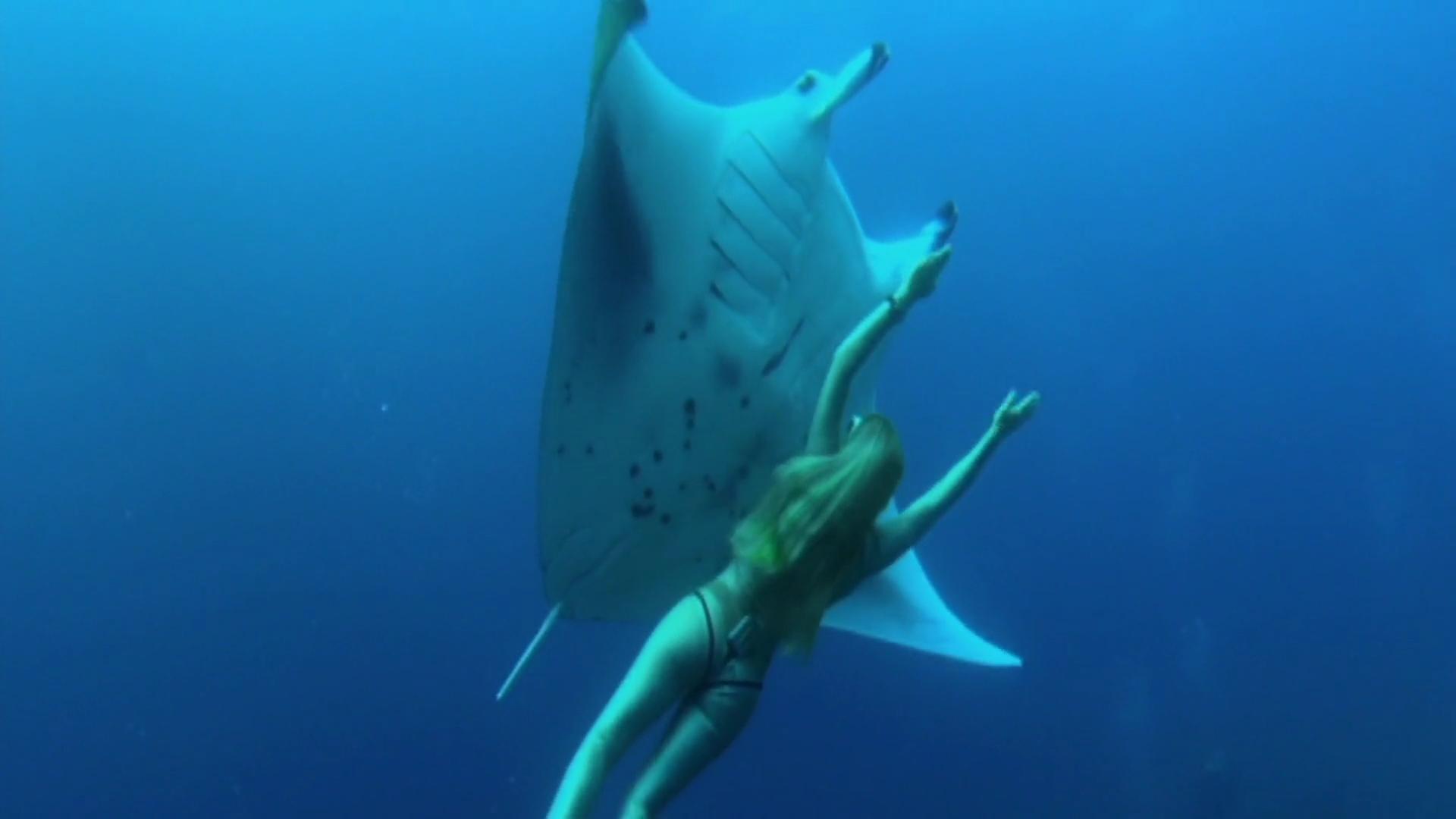 Пластиковый океан / A Plastic Ocean (2017) WEBRip 1080p