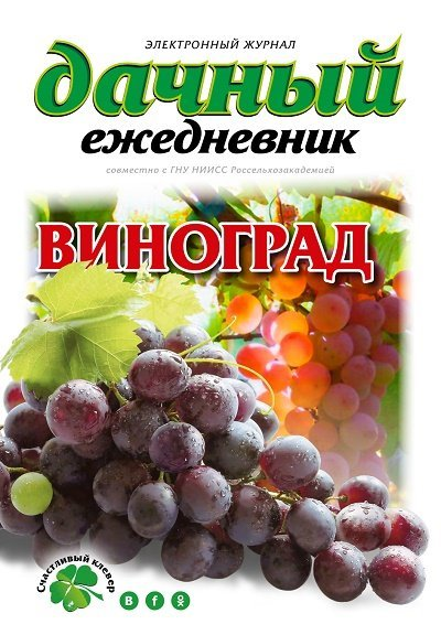 http://i6.imageban.ru/out/2017/12/03/4762d76f588997e44f50d2fe0666b0f1.jpg