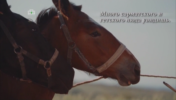 История Молдовы / Istoria Moldovei [01-02] (2017) IPTVRip