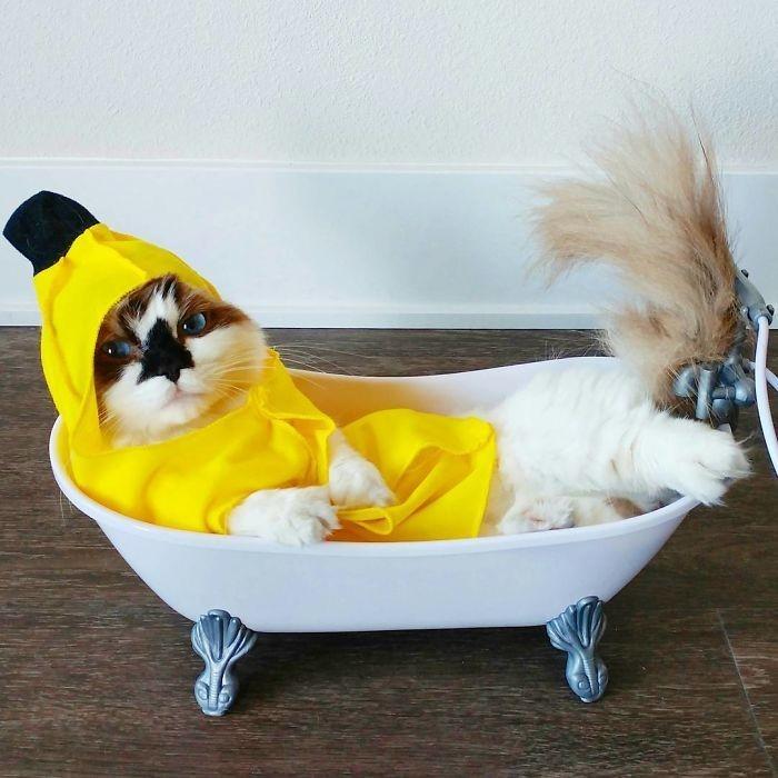 Бананчик в ванной