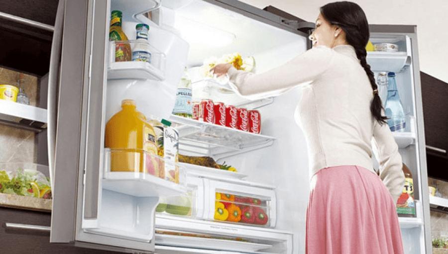 Незаменимая бытовая техника: холодильники и холодильные камеры
