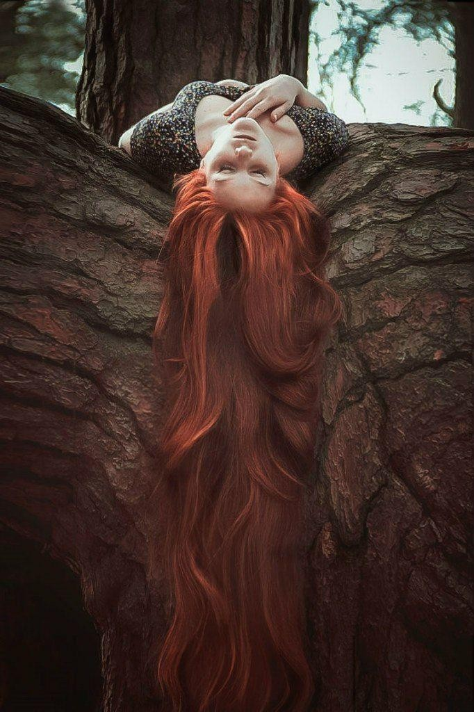 Вмятина в дереве