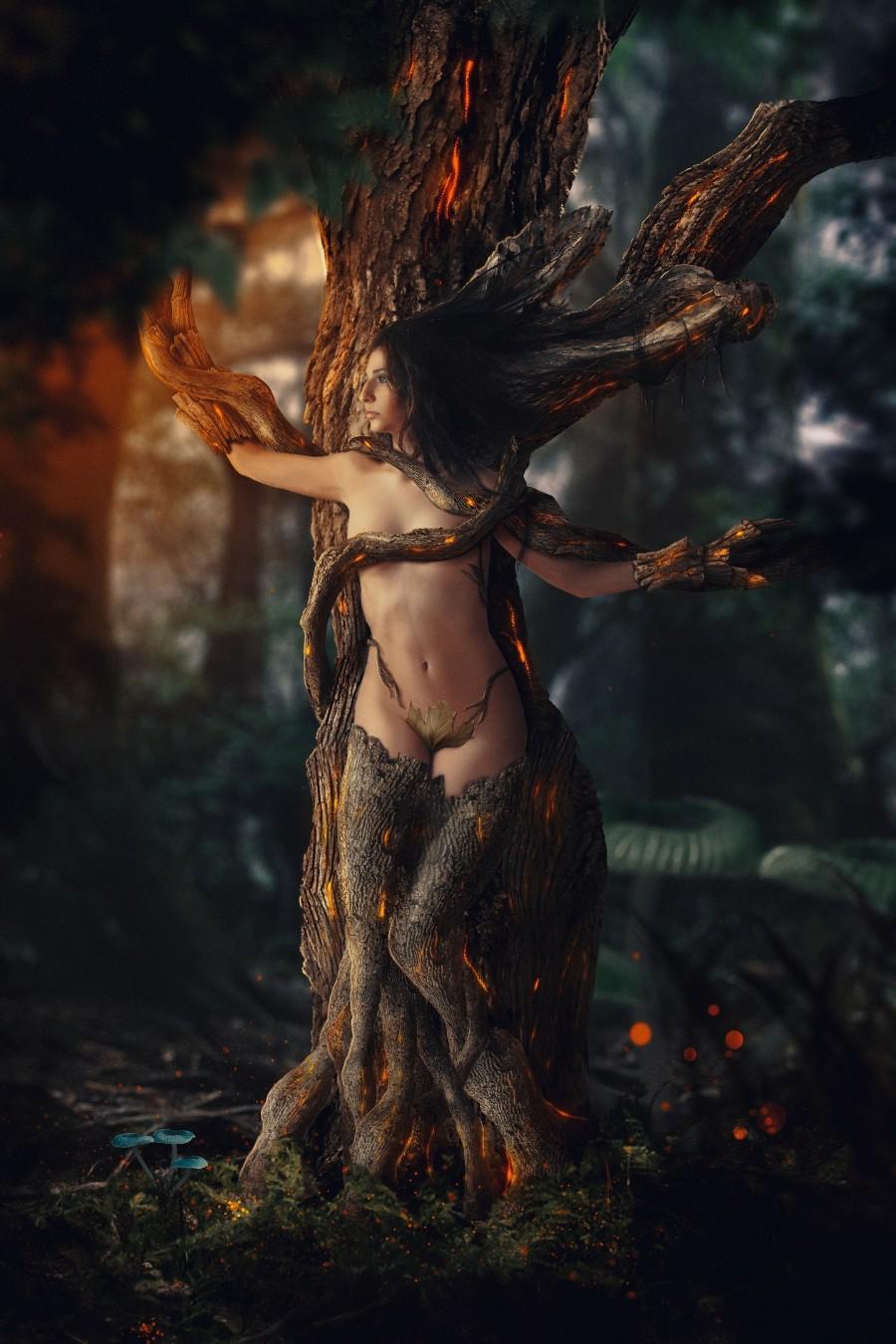 В плену дерева