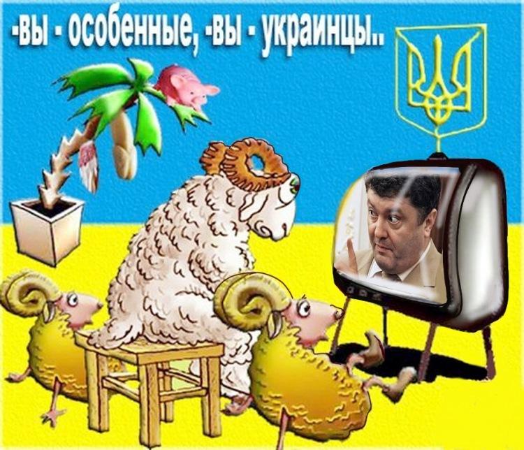 http://i6.imageban.ru/out/2018/06/01/6a72db4054890055c4b6153c9873cd1d.jpg