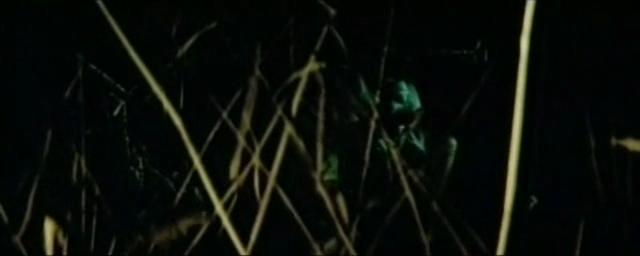 Тайна поющего острова (1980) [SATRip].avi_snapshot_00.17.37.png