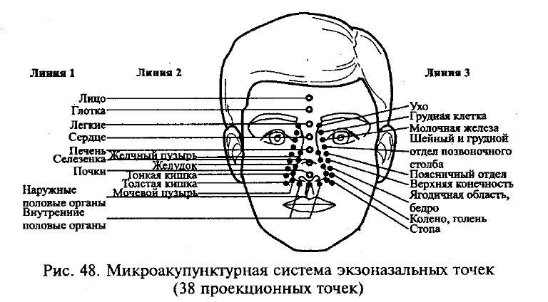 http://i6.imageban.ru/out/2018/08/24/d27a769fa74f2b29831be2ed0a491a5e.jpg