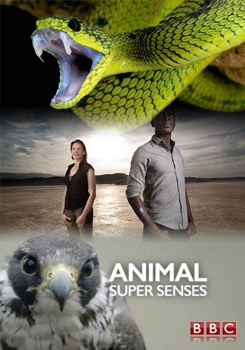 BBC: Уникальные способности животных / Super Senses: The Secret Power of Animals (Animal Super Senses) (2014) HDTVRip [H.264/1080p-LQ] (Серии 1-3 из 3)