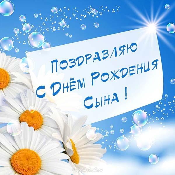 https://i6.imageban.ru/out/2018/12/04/c78072632d2319e249cfb0d1841ea16e.jpg