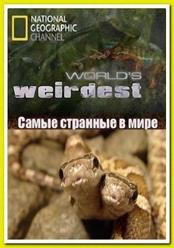 NGW: Самые странные в мире: ползучие целители / World's Weirdest. Creepy Cures (2013) HDTV [H.264/1080i-LQ]
