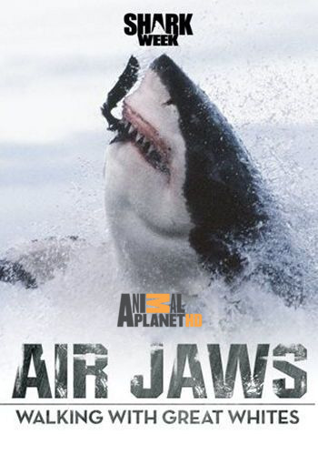 Animal Planet: Летающие челюсти. Прогулка с белыми акулами / Air Jaws. Walking With Great Whites (2015) HDTV [H.264 / 1080i-LQ]