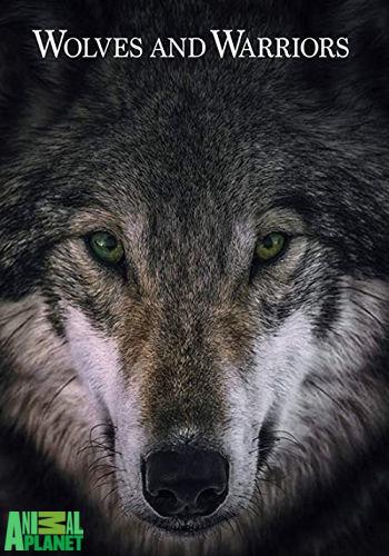 Animal Planet: Волки и воины / Wolves and Warriors (2018) HDTV [H.264/1080i-LQ] (cерии 1-3, 5-6 из 8) (Обновляемая)