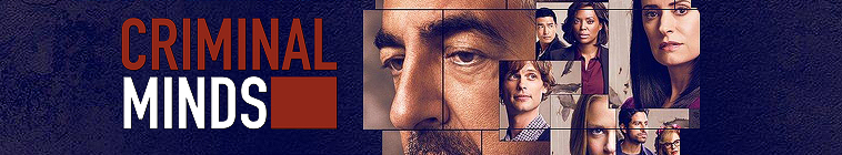 Criminal Minds S14 720p AMZN WEB-DL DDP5 1 H264-NTb