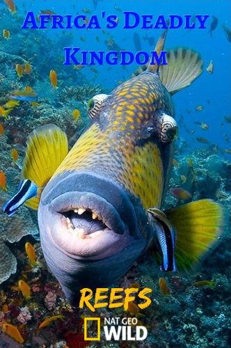 NGW: Смертоносная Африка. Рифы / Africas Deadly Kingdom (2018) HDTV [H.264 / 1080i]