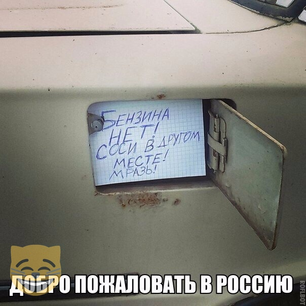 https://i6.imageban.ru/out/2019/03/04/224f717dc0d4b3e7662bf7b9fb9916f8.jpg