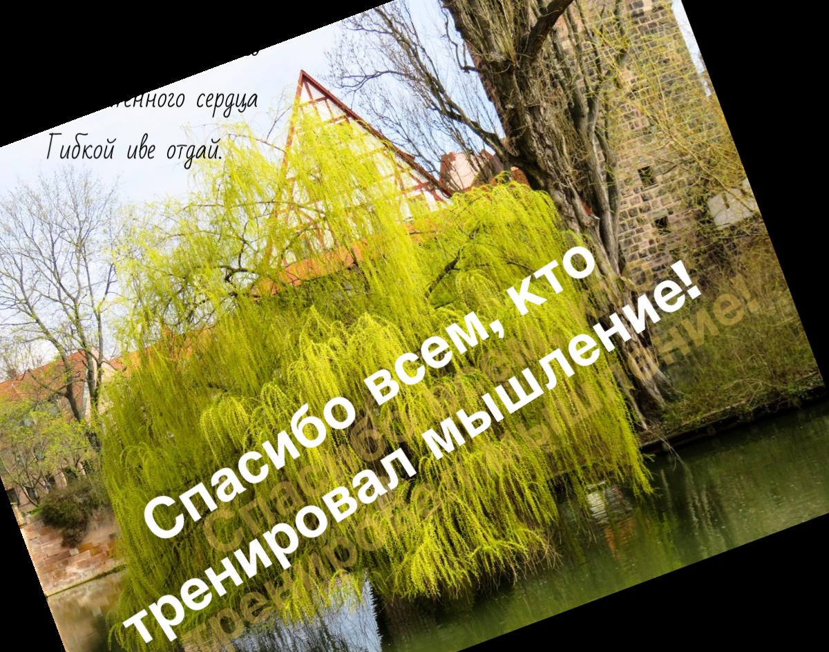 https://i6.imageban.ru/out/2019/04/06/5c804ddfca731e590590b9030f036af7.png