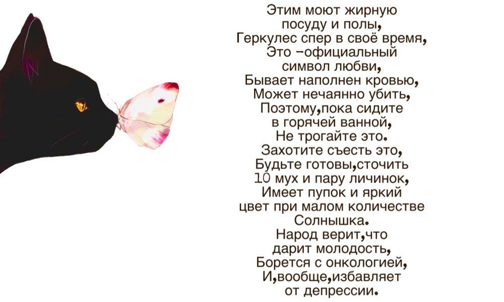 https://i6.imageban.ru/out/2019/04/25/d828544bc3f73767ad09136fee28b062.png