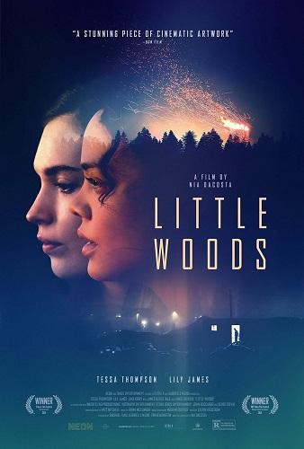 Little Woods 2018 1080p AMZN WEB-DL DDP5 1 H264-NTG