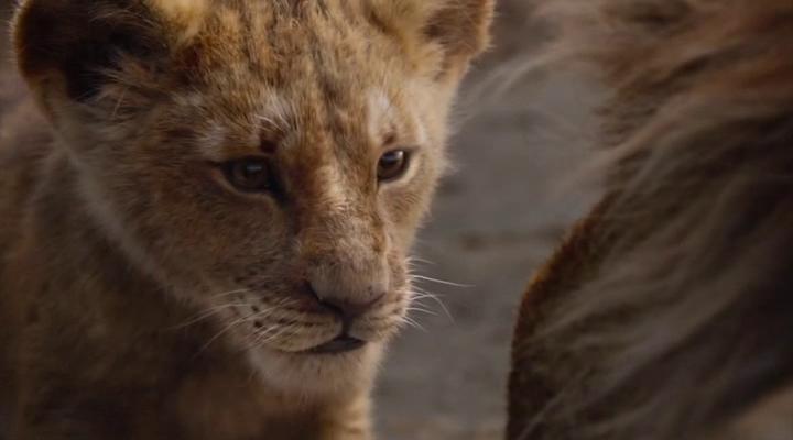 Lion King 2019 1080p Bluray DTS-HD MA 7 1 X264-EVO