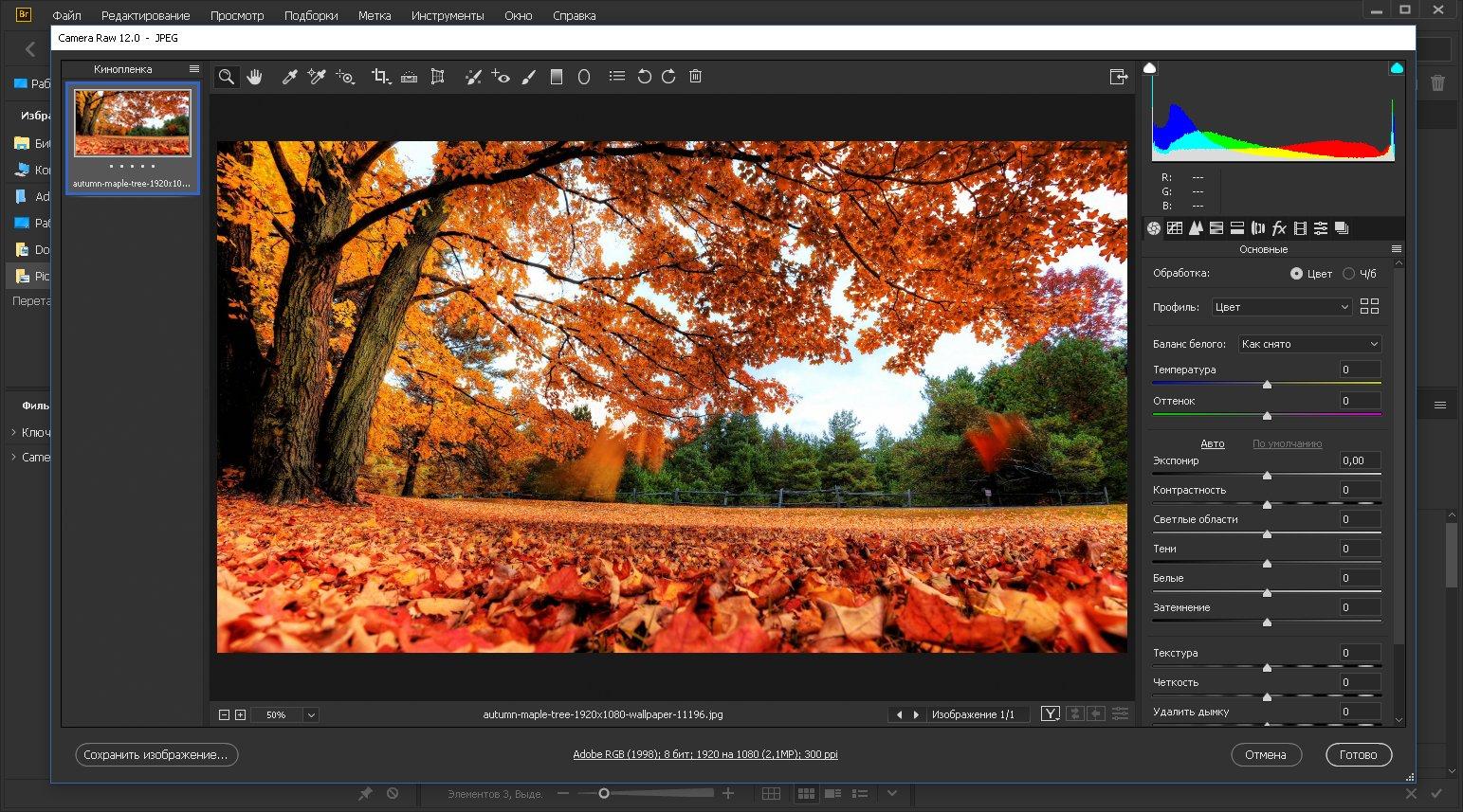 Adobe Bridge 2020 10.0.0.124 (2019) PC | Portable by XpucT