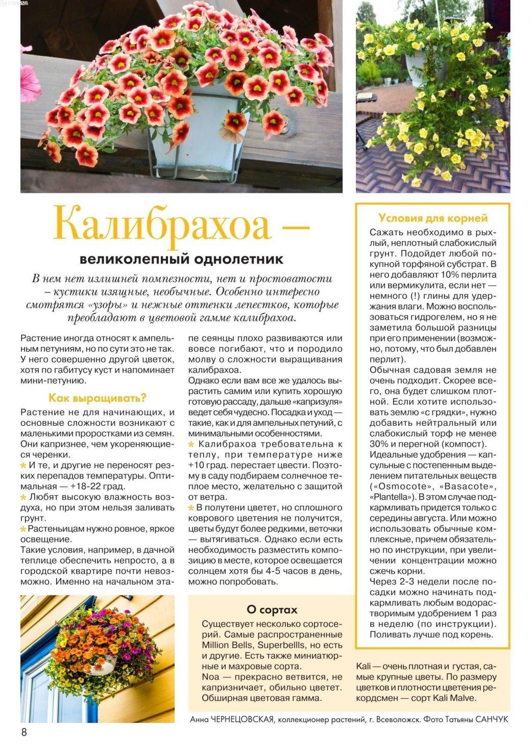 статьи о растениях из  газет и журналов - Страница 8 4697c14471e21a9291a39f7f19c868ee