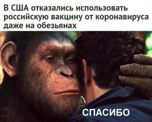 https://i6.imageban.ru/out/2020/09/01/23b1d0d7791ed3d4d56cca92506482b3.jpg