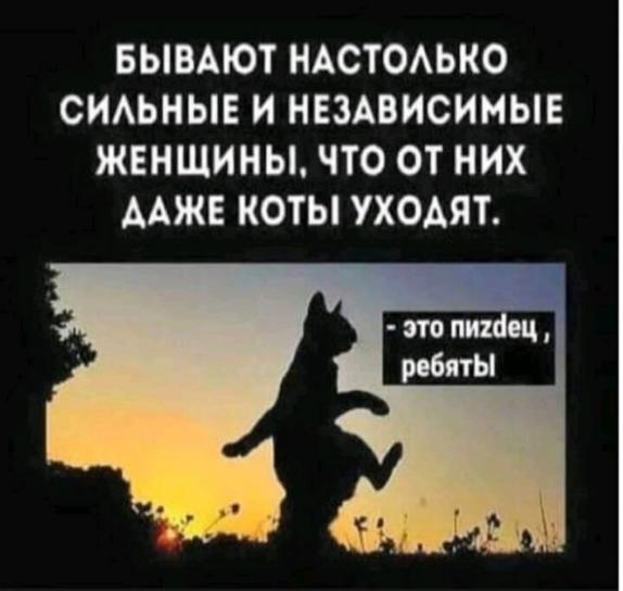 https://i6.imageban.ru/out/2020/09/01/57c1215c871497669623be1ab3c1c483.jpg