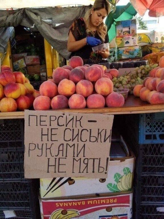 https://i6.imageban.ru/out/2020/09/01/5e49ea0349790a9ecc5c41667a008bed.jpg