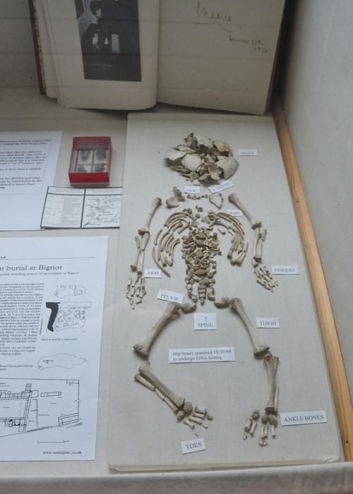 Infant_skeleton_at_Bignor_Villa_was.jpg