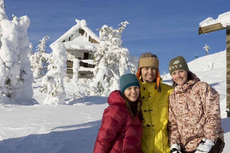 Аренда коттеджа зимой в Финляндии