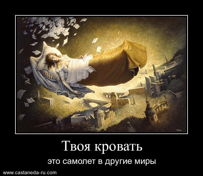 https://i6.imageban.ru/out/2021/07/17/08dac22e2cdf14b750c8b6023ddb35f4.jpg