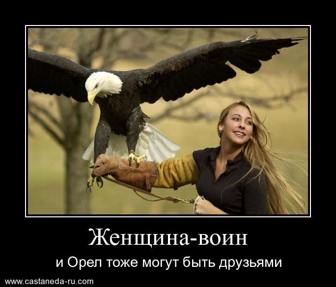 https://i6.imageban.ru/out/2021/07/17/0bdecf6d30180a238082c359c83f633a.jpg