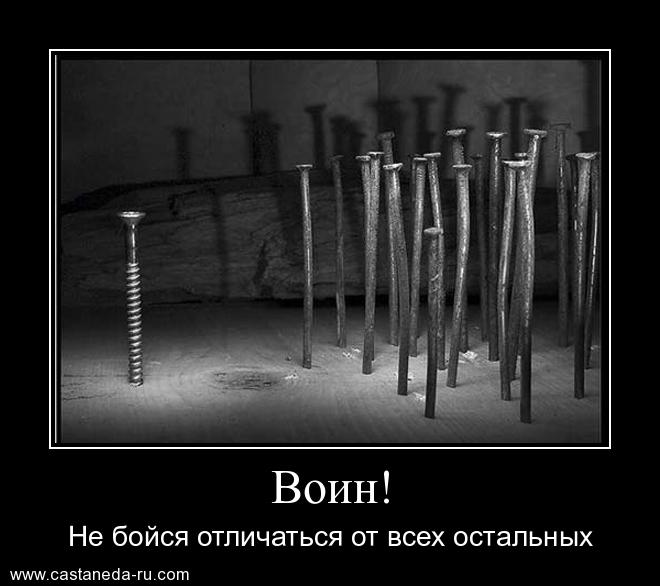 https://i6.imageban.ru/out/2021/07/17/0dcd3a091c64df0da66e28b0baeb0298.jpg
