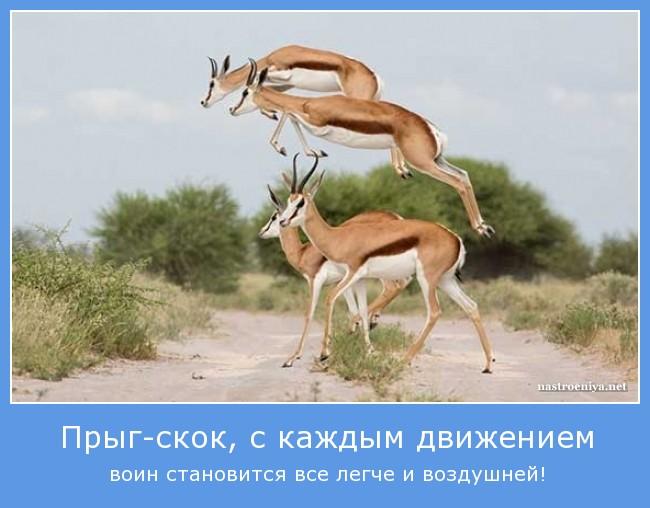 https://i6.imageban.ru/out/2021/07/17/0ed08789c8a42b95ed70ecd93def9e06.jpg