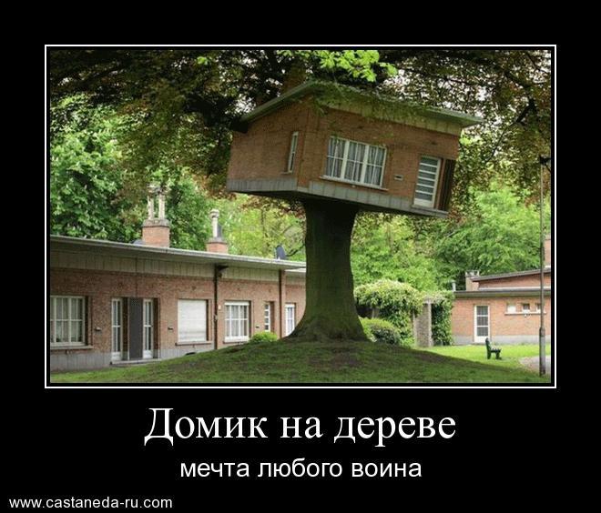 https://i6.imageban.ru/out/2021/07/17/11be1c1da0eac4bd7de8495d37ffd5b3.jpg