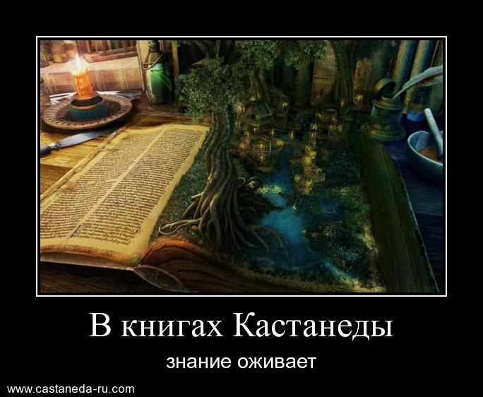https://i6.imageban.ru/out/2021/07/17/146eb097e88ebc943c93c21c1c66f050.jpg