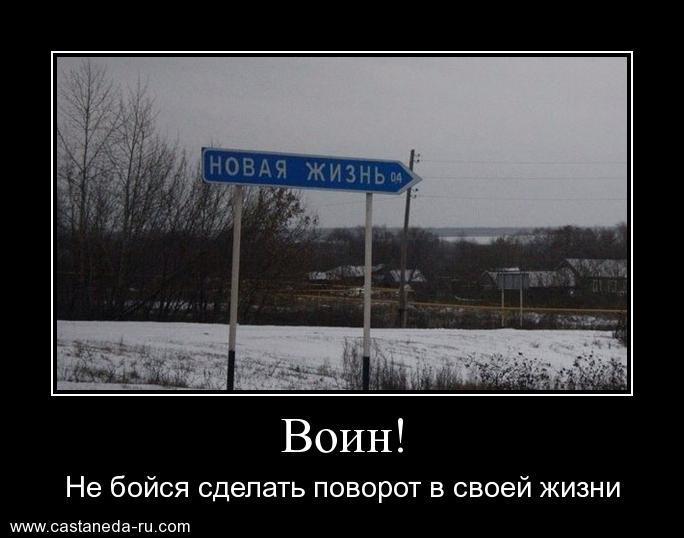 https://i6.imageban.ru/out/2021/07/17/1d012a78c7cb60ba997a0d5ebc68757d.jpg
