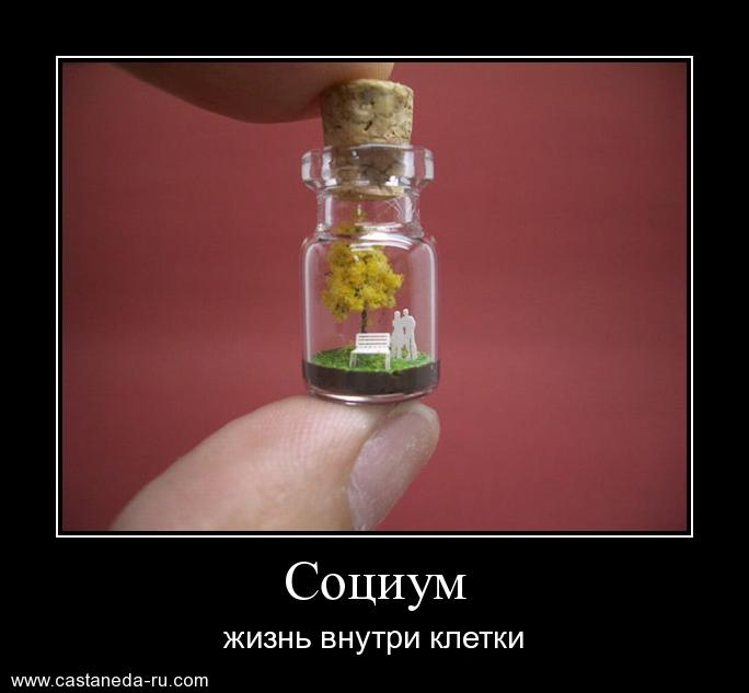 https://i6.imageban.ru/out/2021/07/17/1eb1838c3e3fdcf941e06062df4466c1.jpg
