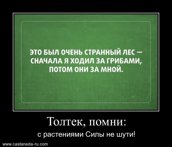 https://i6.imageban.ru/out/2021/07/17/2182d748f42731ef74328f78634aa5cb.jpg