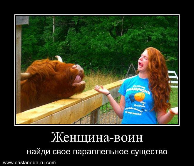 https://i6.imageban.ru/out/2021/07/17/26efafcc53dea97585af8165ce518782.jpg