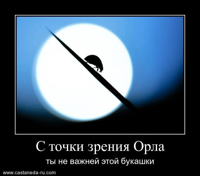 https://i6.imageban.ru/out/2021/07/17/279884764dde997f7e64590c037413a3.jpg