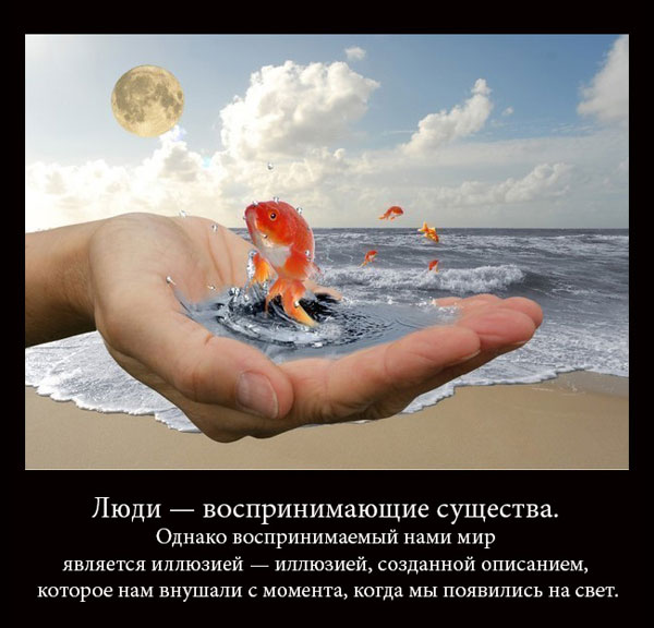 https://i6.imageban.ru/out/2021/07/17/34087efd65d5007580803ec8cc8aa920.jpg